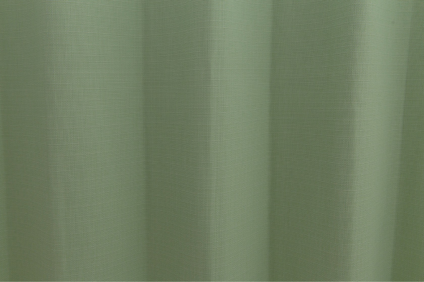 癒される緑のカーテン。